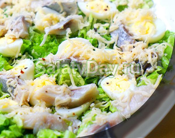 Салат с перепелиными яйцами, сыром и селедкой