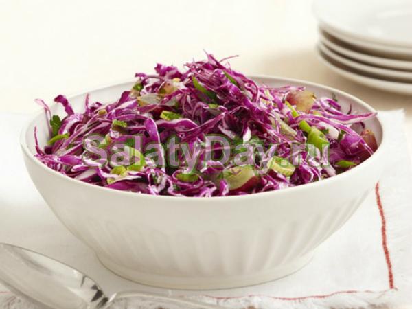 Салат из краснокочанной капусты с солеными огурцами и яблоками