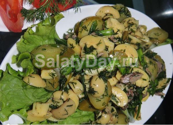 Простой салат с шампиньонами консервированными