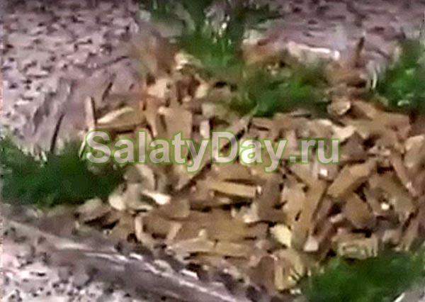 простые рецепты салатов из печенки