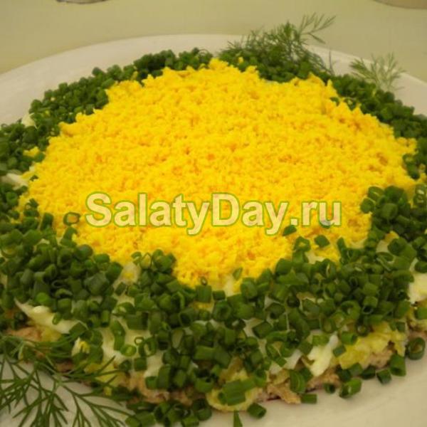 Мимоза салат с консервой и солеными огурцами